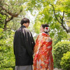 妙蓮寺境内でのお写真