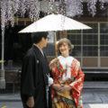 「藤の花と」他|2018年4月 撮影実績・お客様の声