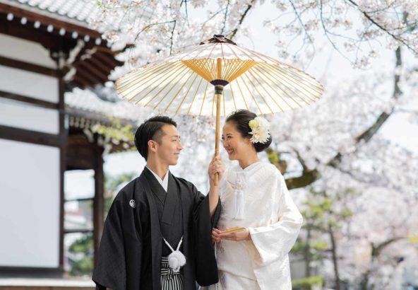 桜をバックに和装前撮りお写真