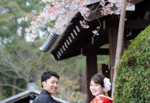 桜吹雪を背景にした結婚写真