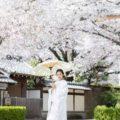 京都で前撮り おすすめの季節は?「古都の花嫁」季節別撮影ガイド