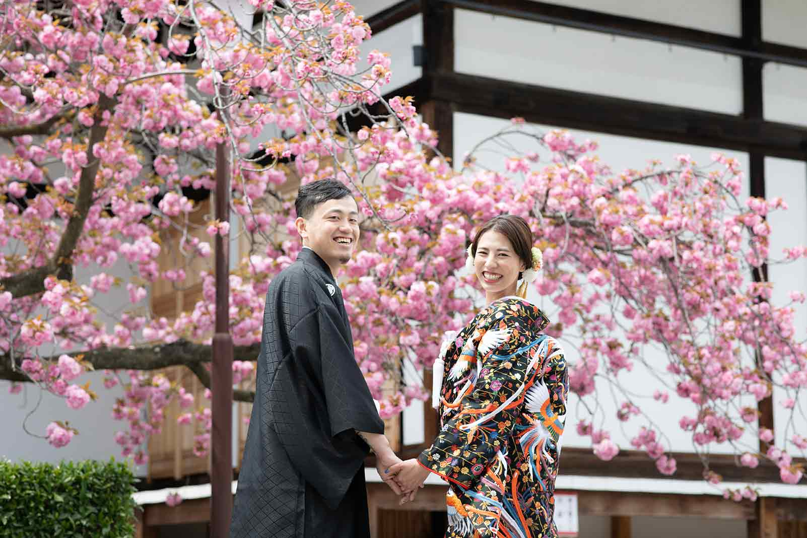 八重桜を背景に京都で前撮り