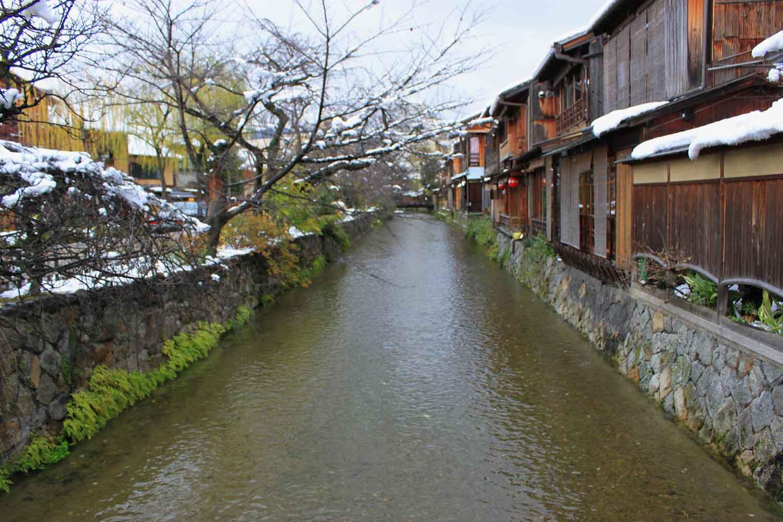 冬の京都の落葉