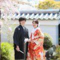 2020年4月「京都の枝垂れ桜と和装前撮り」他|2020年4月 撮影実績・お客様の声