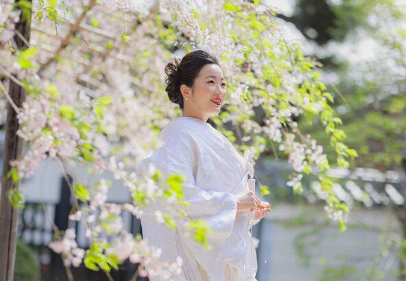 妙蓮寺枝垂れ桜の下での花嫁様