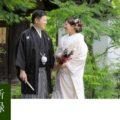 京都で前撮り「新緑」のシーズン解説とお写真紹介
