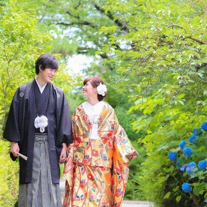 紫陽花&新緑と(季節:夏)