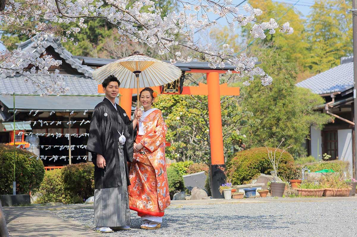 京都で春に前撮りおすすめロケーション「戒光寺」