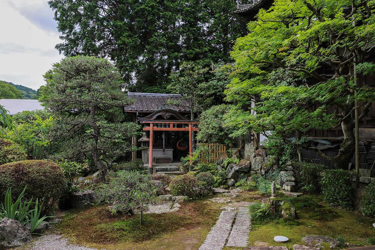 京都戒光寺様の日本庭園