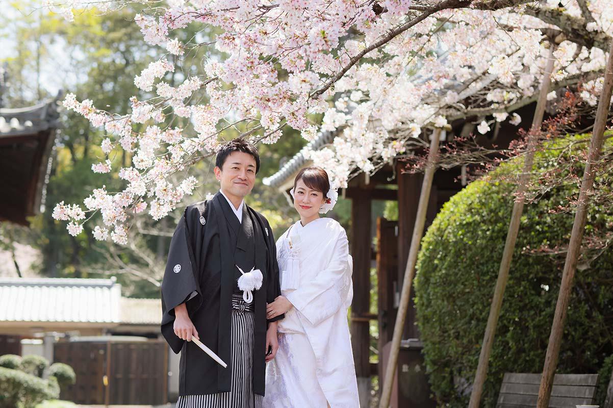 京都の桜と和装前撮りのカップル様