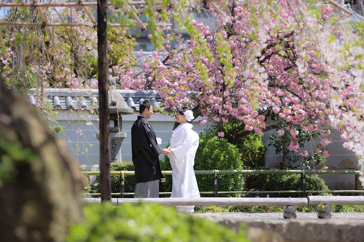 八重桜を背景に手を取り合う和装姿の新郎新婦様