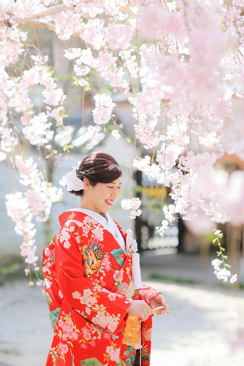 枝垂れ桜の下の赤い打掛の花嫁様