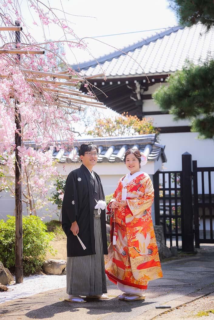 ピンクの枝垂れ桜と色打掛の新郎新婦様