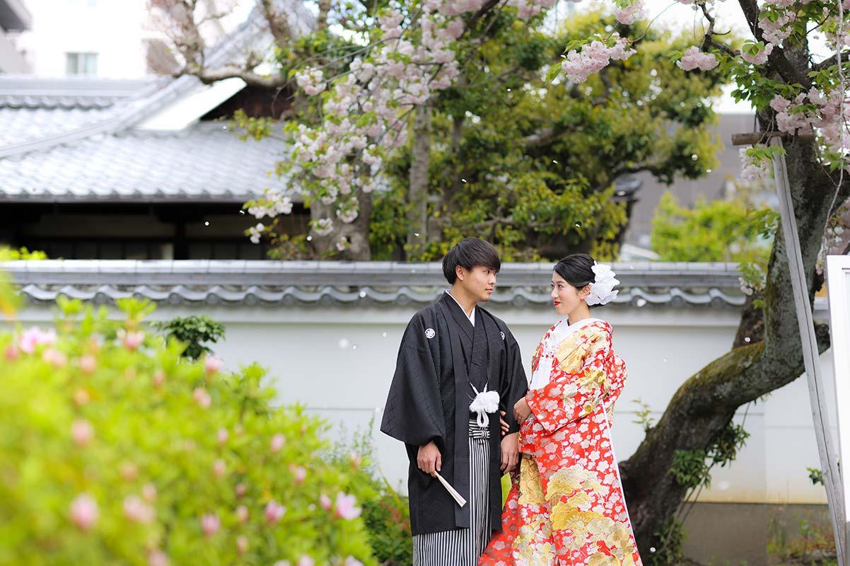 桜吹雪の中、京都で和装前撮り