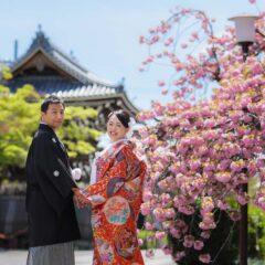 八重桜と鐘楼を背景にした振り返りのお写真