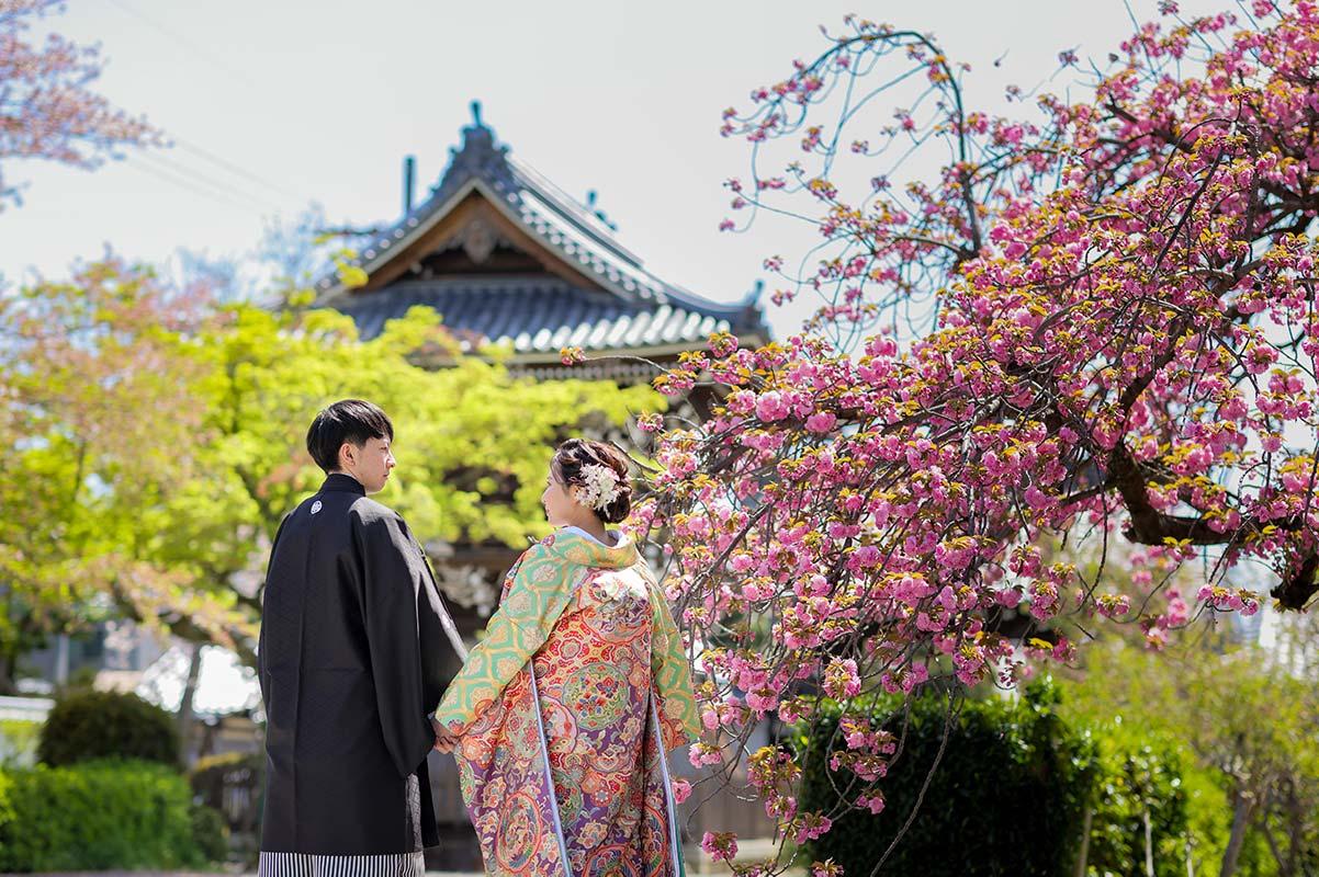 妙蓮寺様の八重桜と