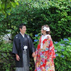 紫陽花を前に手を繋ぐ新郎新婦様