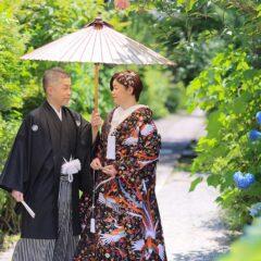 紫陽花と色打掛での結婚記念和装写真