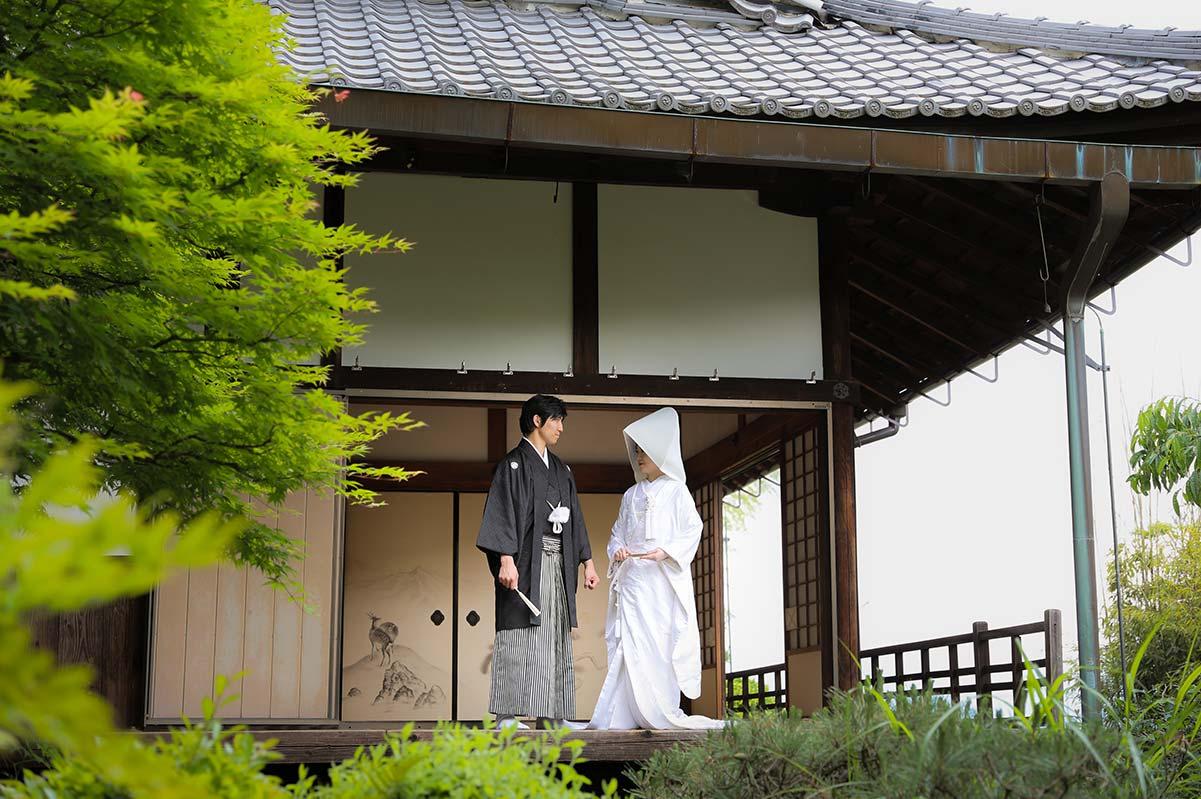 白無垢綿帽子姿で新郎様と見つめ合う花嫁様