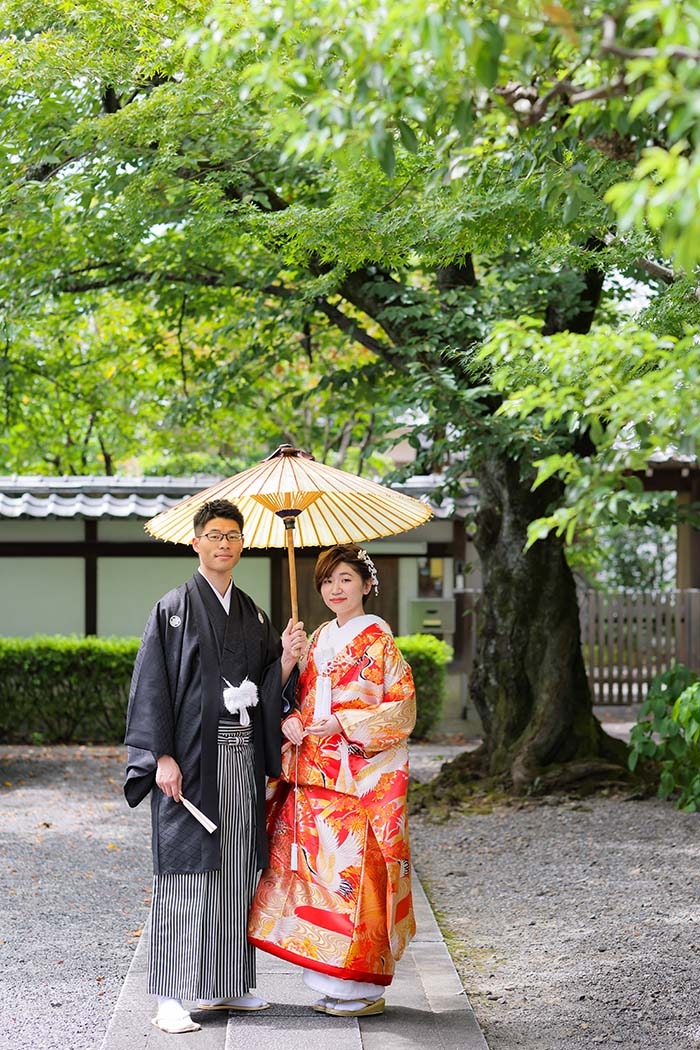 京都妙蓮寺境内で番傘を使って撮影